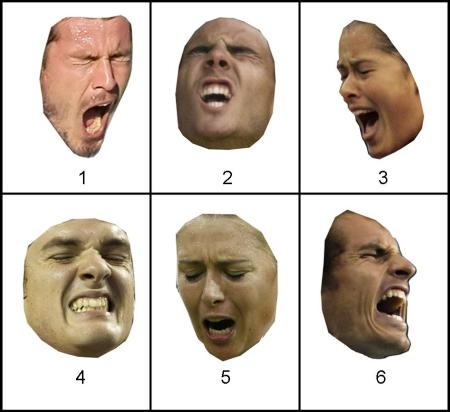 Expressions numbered 1,4,6 show tennis player's face on losing a point; expressions numbered 2,3,5 show a player after winning a point).                                                                             (Credit: Reuters: used with permission)